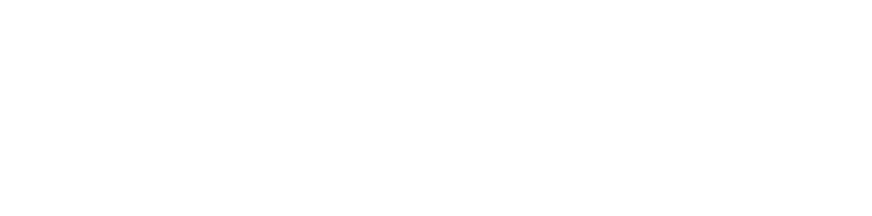 Logo AlpenPionier weiss